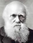 Darwin riflessioni