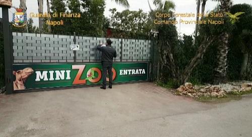 Napoli, sequestrato Zoo abusivo