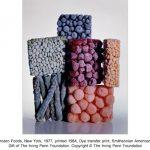 Irving Penn, Frozen Foods, New York, 1977, printed 1984, Dye transfer print