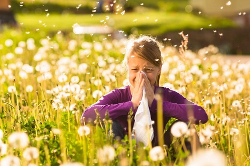 asma allergico
