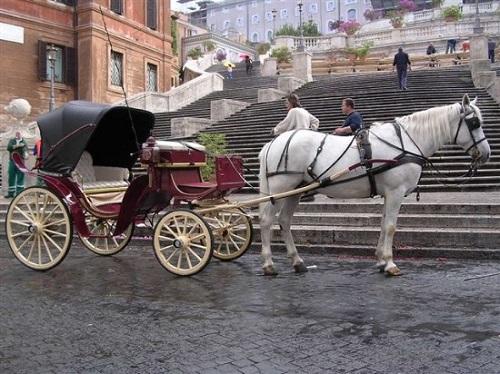 Carrozza con i cavalli
