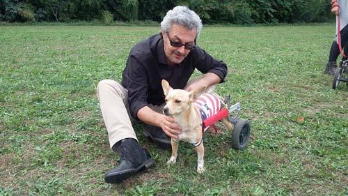 La Legge quadro su animali d'affezione e randagismo compie 25 anni