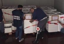roma-maxi-sequestro-pesce