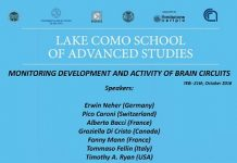 locandina_school-of-neuroscience-como-2016-3_b
