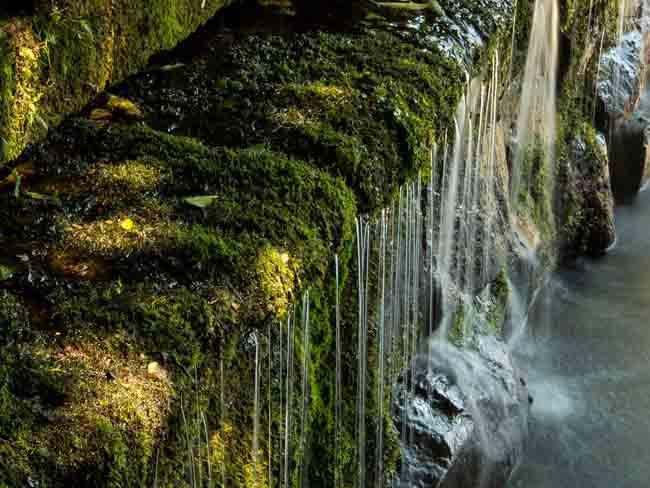 Giornata mondiale dell'acqua 2018, l'invito di Confagricoltura a un uso razionale