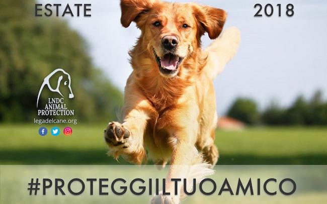 Estate 2018 consigli protezione animali