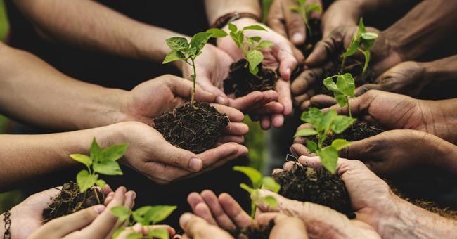 coltiviamo agricoltura