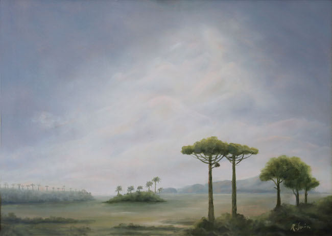 landscape with araucaria