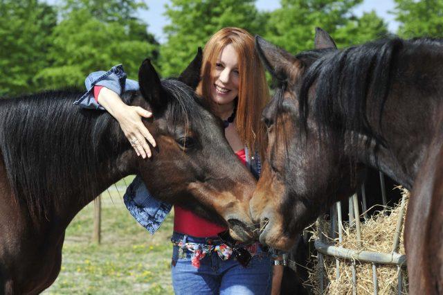 brambilla cavalli