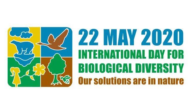 giornata biodiversita 2020