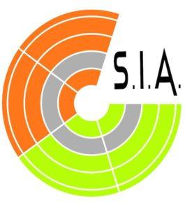 Stewarding Italiani Associati logo