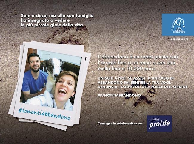 campagna antiabbandono lndc