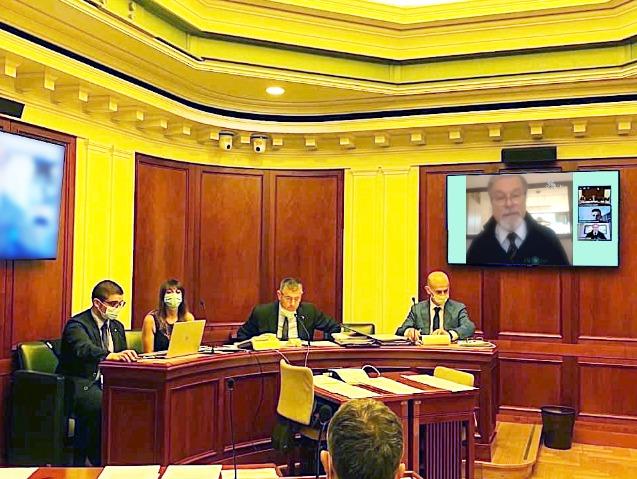 cirone videoconferenza senato