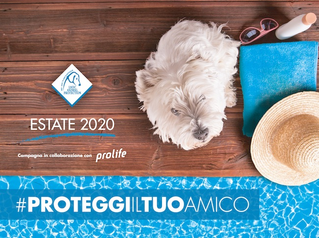 proteggi amico cane 2020