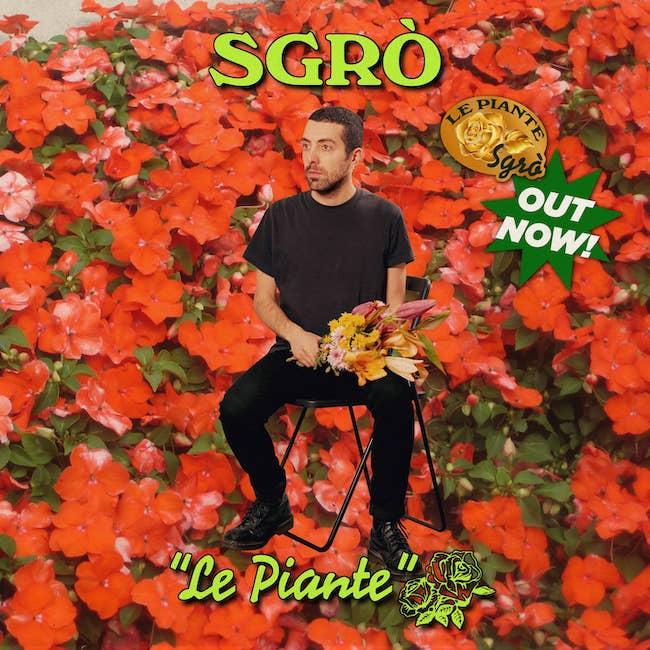 le piante copertina