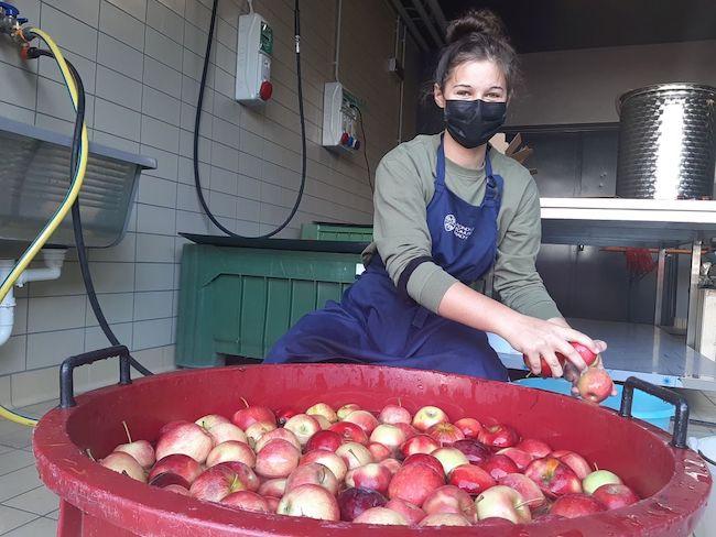produzione succo mela studentessa fm