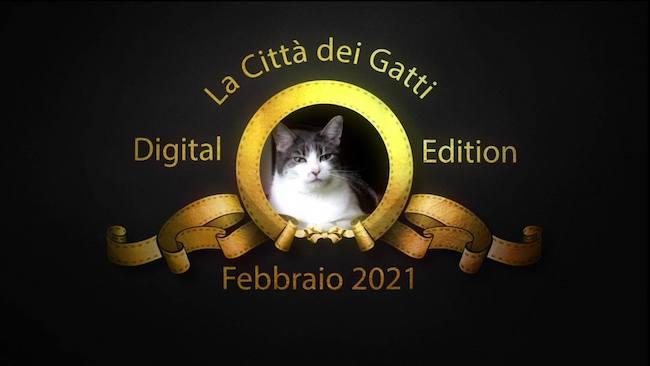 la città dei gatti 2021