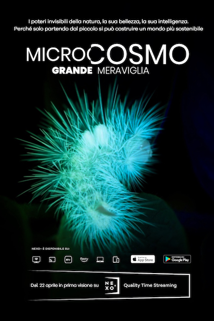 microcosmo poster