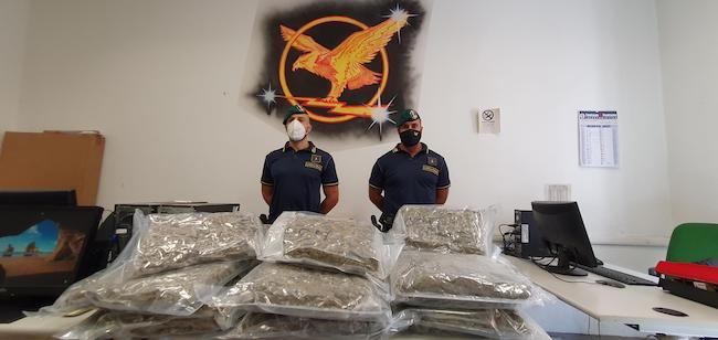 gfd sequestro 22 kg marijuana