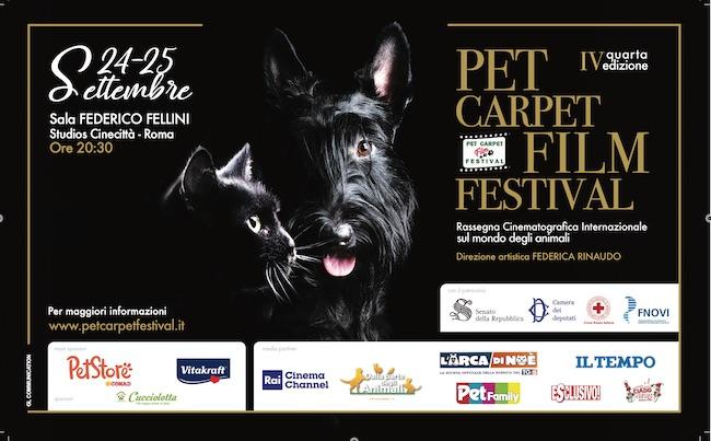 pet carpet film festival 2021