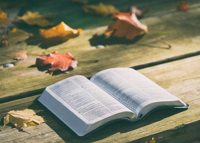 libri consigli leggi con me ottobre